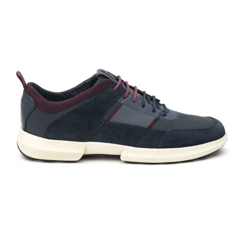 Sneakers Geox Traccia Blu/Bordeaux online - Sneakers - prezzo: 125,00 € product_reduction_percent